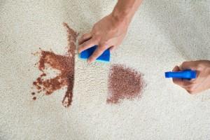 kde nechat vyčistit koberec