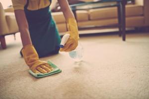 čištění koberců prvotřídní kosmetikou