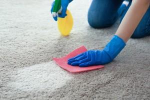 čištění a tepování koberců