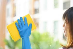 mytí prosklenných stěn