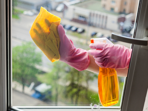 """""""Výškové práce Praha"""" nám zbavil okna plísně a ještě je krásně umyl a vyleštil"""
